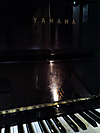 Yamahau104